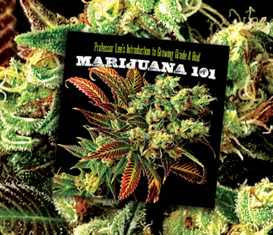 marijuana101-book-nug-magazine.jpg.881a4a407d3dc4d32a2be409fa8c8cd1.jpg