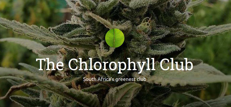 The Chlorophyll Club