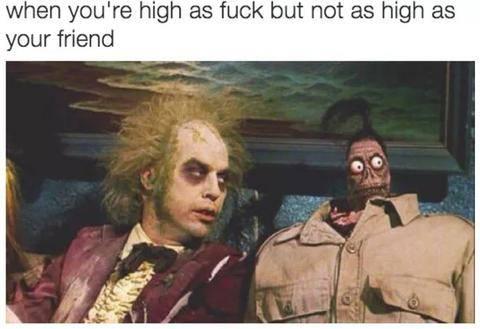 hilarious-memes-stoners-marijuana-smoking-weed_771_large.jpeg