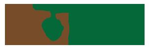 G-logo-wp.png.5b741768eb6623a43607c0d2602c1365.png